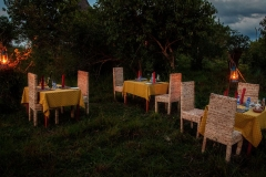Mburo_Uganda_Mburo_Safari_Lodge_Restaurant_Bush_Picnic_IMG_4131
