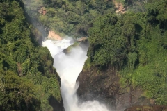 Murchison-Falls-Big-Five-Safari